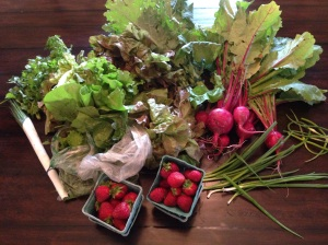 Buttermilk Falls CSA Week 1